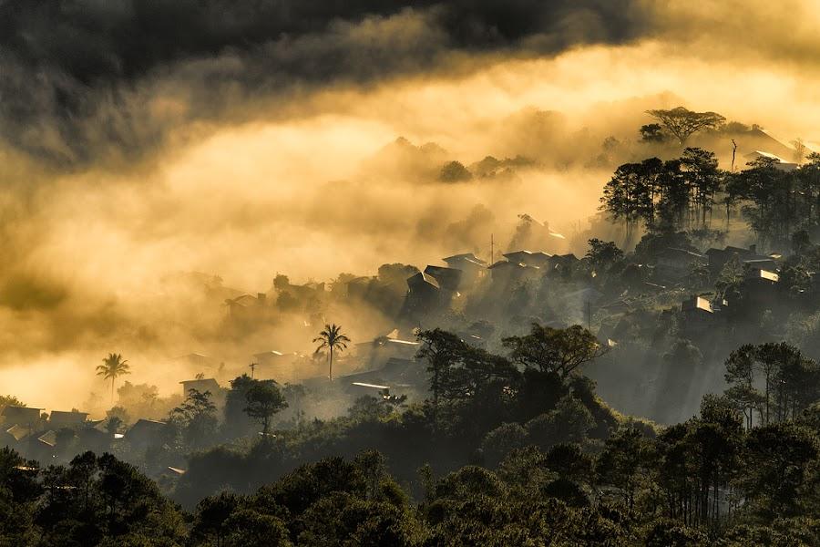 Misty Baang, Sagada Phil. by JRene Ricaforte - Landscapes Mountains & Hills