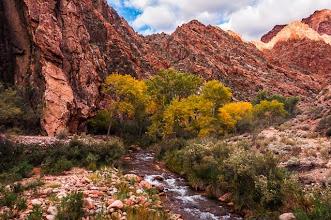 Photo: The Colorado River at the bottom of the Grand Canyon Nation Park, Arizona, USA