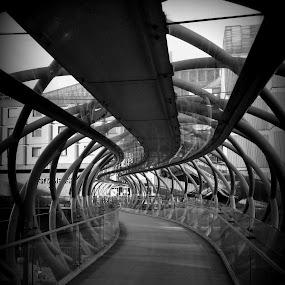 St James Bridge by Nicola Graham - Abstract Patterns ( pwccurves, abstract, patterns, bridges, curves )