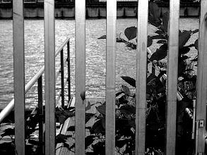 Photo: Eau en cage