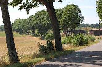 Photo: Droga z Zalewa do Witoszewa (Kunzendorf)