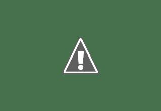 Photo: Nov 1968 - Patrulha na Picada Chimbete / Sangamongo. - Comandada pelo Furriel Azevedo e condutor Soldado Ferrer - Chimbete - Cabinda - Angola