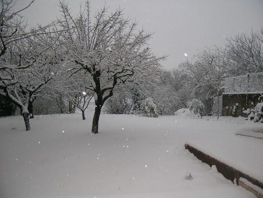 Bianco  di Nikaele