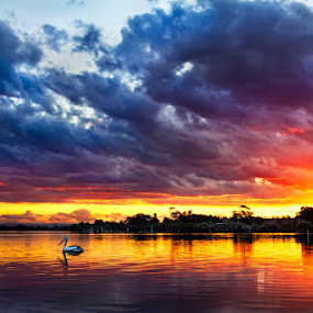 Sunset on Fire by Andy Hutchinson - Landscapes Waterscapes