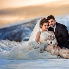 Wedding photographer Dmitriy Coy (Dtsoyphoto). Photo of 10.01.2016