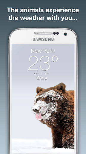 免費下載天氣APP|Wildlife Weather app開箱文|APP開箱王