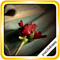 Jigsaw Puzzles: Roses