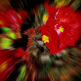 Red Zoom Burst by Dave Walters - Digital Art Abstract ( red, lumix fz2500, abstract, colors, digital art )