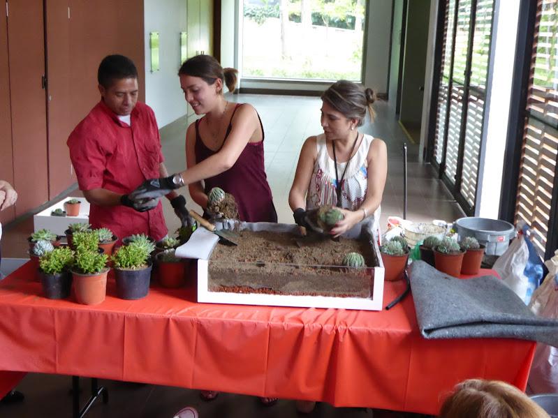 curso en Ecuador de jardines verticales