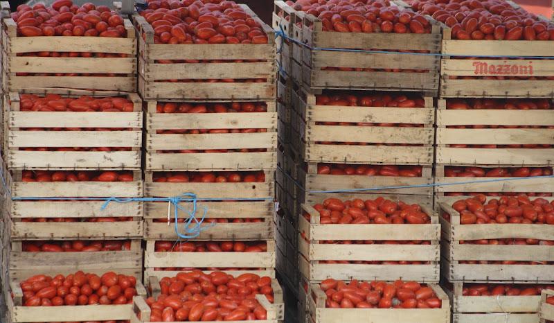 Rosso pomodoro di carmelo_d