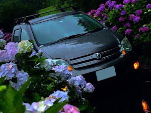 イスト NCP60 H14年式    1300cc    FFのカスタム事例画像 yuyaさんの2020年07月06日15:59の投稿