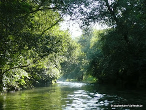 Photo: Alles grün im Neckarkanal neben der Neckarinsel ... eben der grüne Weg -> ViaVerde