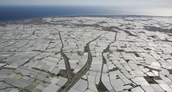 El ejido la zona de mayor riesgo de desertificaci n - El ejido almeria ...