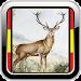 Hunting - Calls - Social Network - Moon Calendar icon