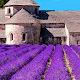 Provence's Best: France Travel Guide Download on Windows