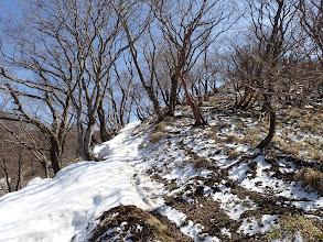 夏道は雪なので尾根沿いに進む