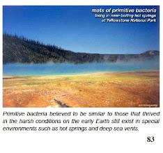 Photo: Grand Prismatic Spring  -  Yellowstone