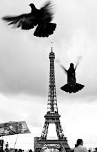 Photo: Paris by: Alberto Lopez Jordan