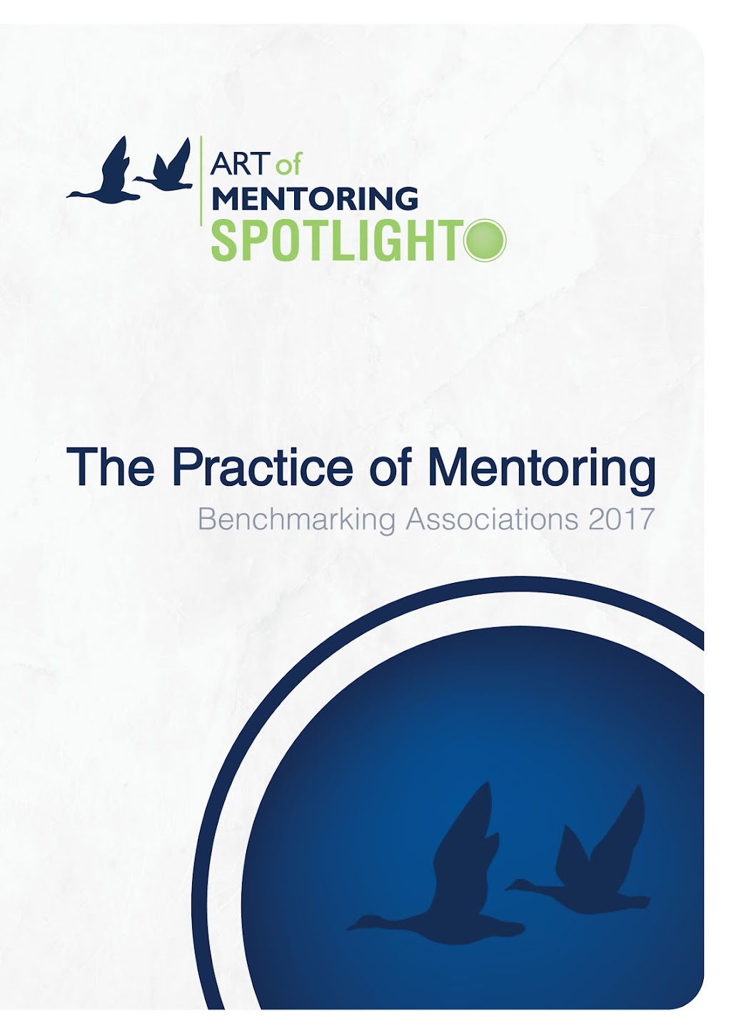 spotlight-mentoring-associations