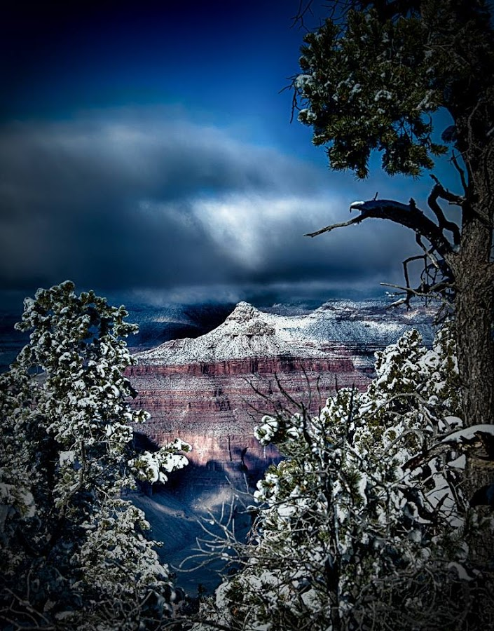 Winter in the Canyon by Brent Morris - Landscapes Weather