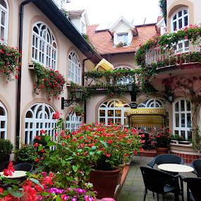 Hotel Livadic, Samobor, Croatia by Andjela Miljan - City,  Street & Park  Street Scenes