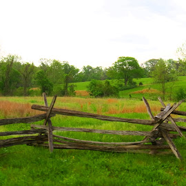 Bull Run Battlefield, Virginia by Rita Goebert - Landscapes Prairies, Meadows & Fields ( historic battle fields; fences; virginia; bull run battlefield fence,  )