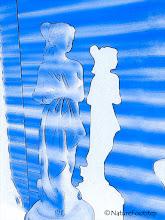 Photo: Blue blinds © NF PhotoArt 140521 http://nfverk.blogspot.se/2017/01/blue-blinds.html