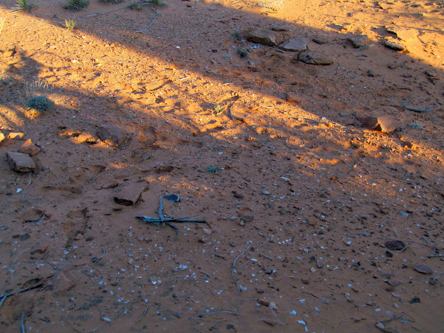 Lithic scatter