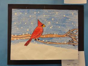 Photo: Snow and Cardinal Grade 4