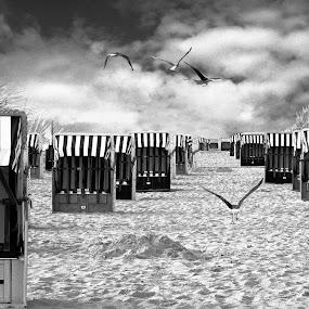Strandkörbe by Inger Wakolbinger - Landscapes Waterscapes