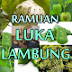 Tanaman Herbal Untuk Menurunkan Asam Lambung Download on Windows