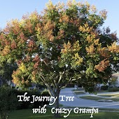 The Journey Tree with Crazy Grampa