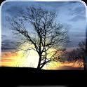 Silhouette Live Wallpaper icon