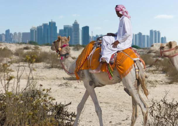 Acampamento Beduíno: Atrações de Dubai