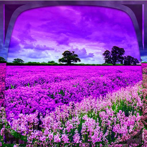 Purple Nature Live Wallpaper