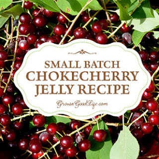 Chokecherry Jelly with Pamona's Pectin