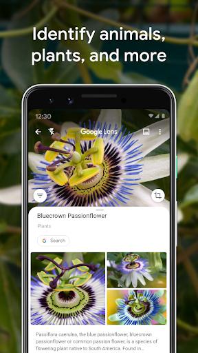 Google Lens 1.12.200728019 Screenshots 3