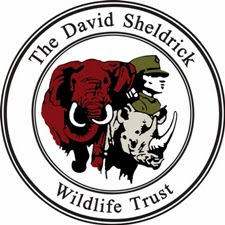 David_Sheldrick_Wildlife_Trust