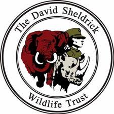 David_Sheldrick_Wildlife_Trust