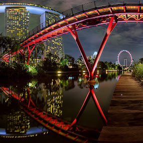Dragonfly Bridge by Lb Chong Jacobs - Buildings & Architecture Bridges & Suspended Structures