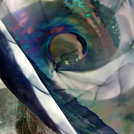 by Barbara Boyte - Abstract Patterns