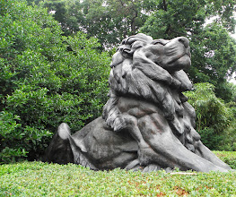 Photo: The Lion guards the National Zoo.
