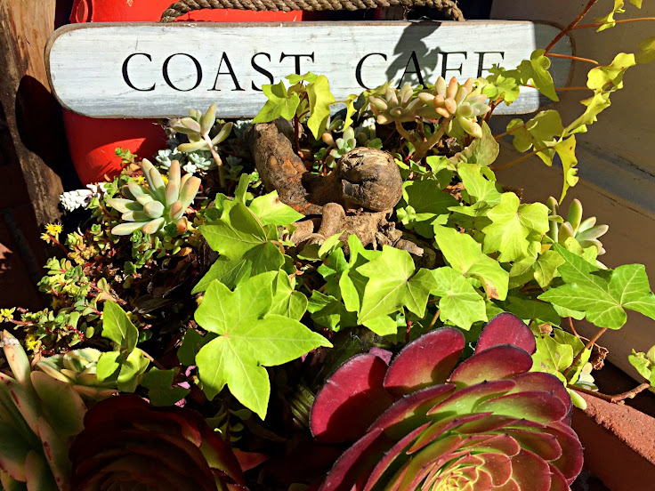 Succulents decorate the front porch of Coast Cafe.