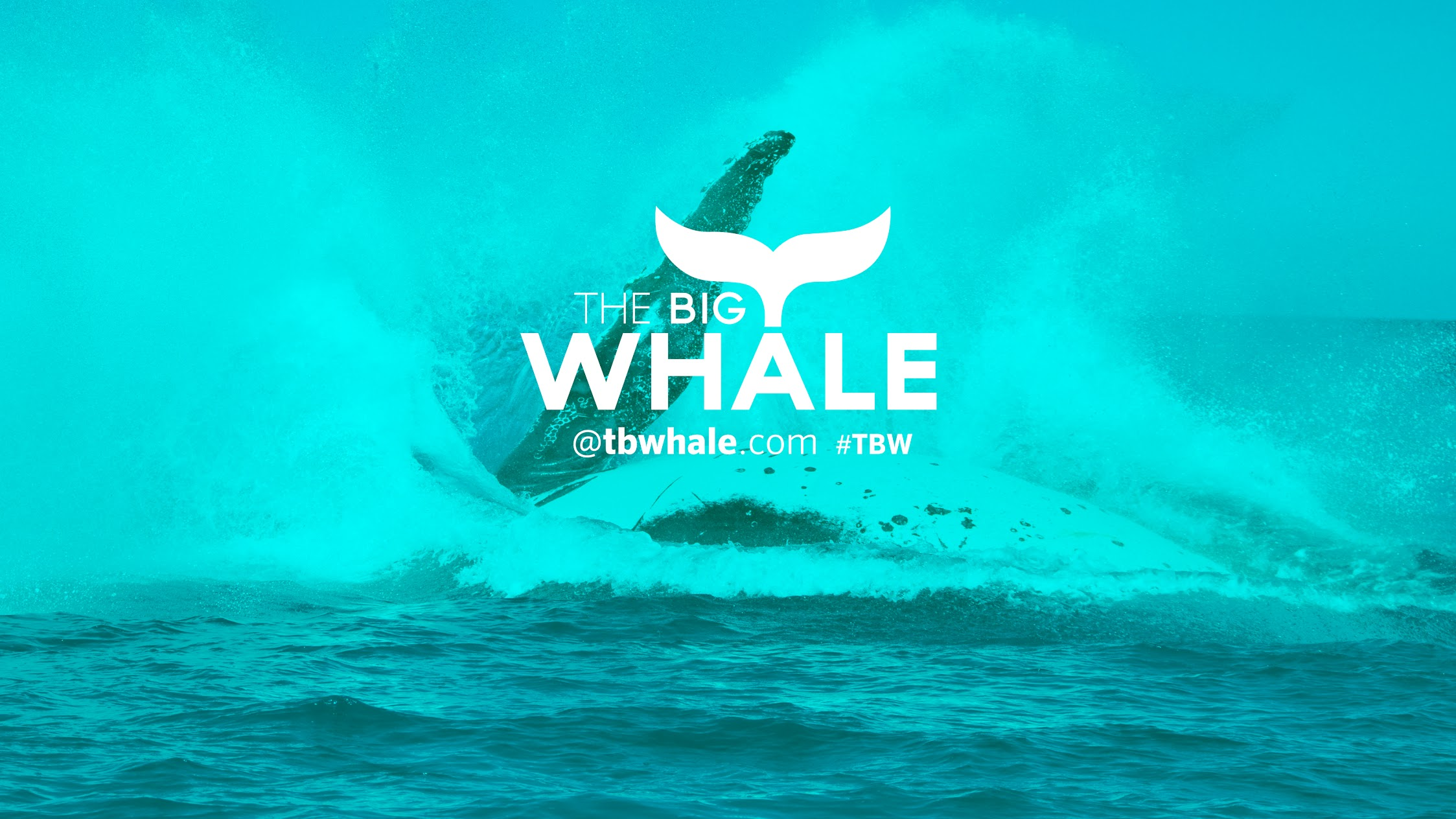 tbWhale