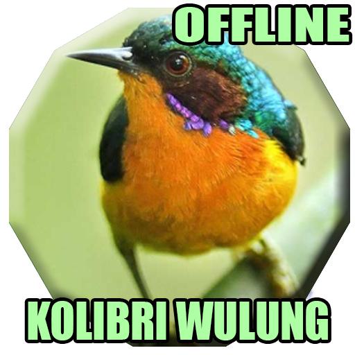 Suara Burung Kolibri Wulung Gacor Mp3 برنامه ها در Google Play