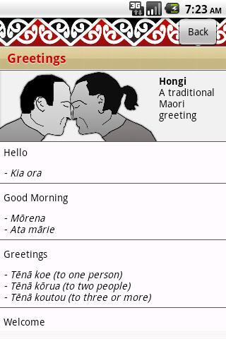 Maori phrases apk download apkpure maori phrases screenshot 1 maori phrases screenshot 2 m4hsunfo