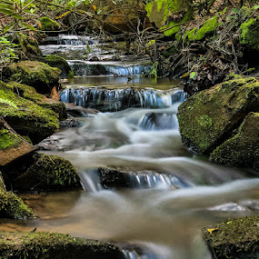 Peaceful by Keith-Lisa Bell Bell - Landscapes Waterscapes ( small falls, creek, nature up close, forest,  )