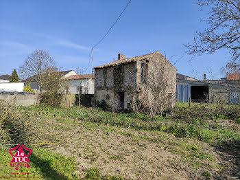 terrain à Saint-Aubin-du-Plain (79)