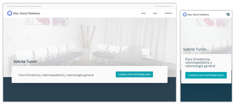 Sitio web Dra. Shule