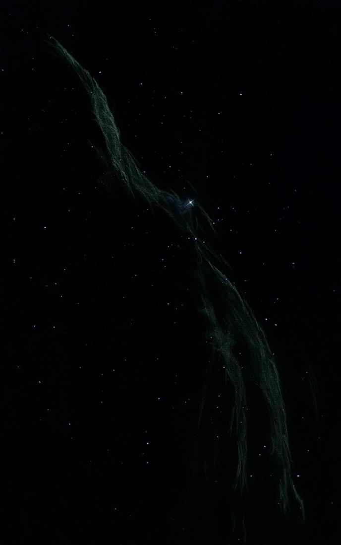 Photo: La petite dentelle du Cygne, NGC 6960, dans le T406 et OIII à 88X les 10 et 11 août 2011. Ste Gemme.